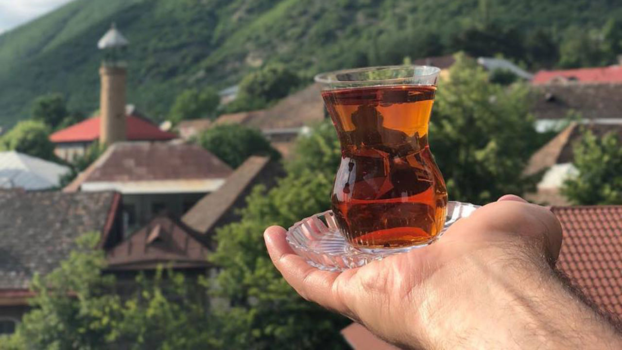 Visit minimum 3 cities in Azerbaijan like: Sheki, Lankaran, Guba